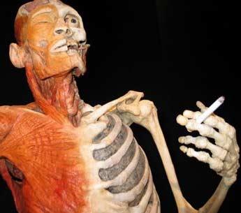 сколько лет курить до импотенции