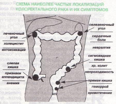меню от диетолога ксении селезневой