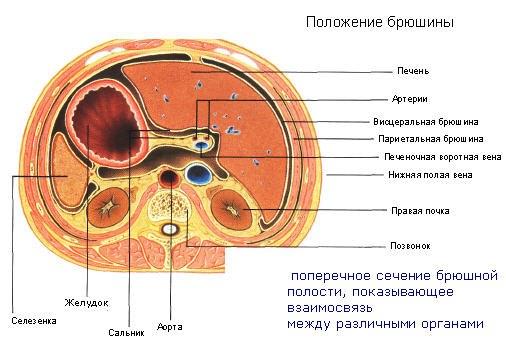 Боль при массаже головы и шеи