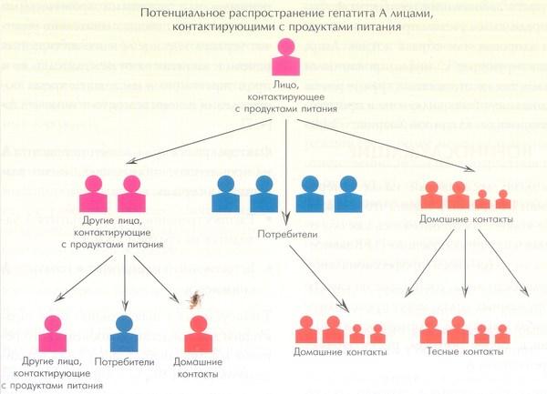 Запись на прием к врачу женская консультация калининград